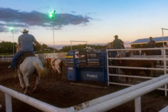 Cowboy Church Calf Roping