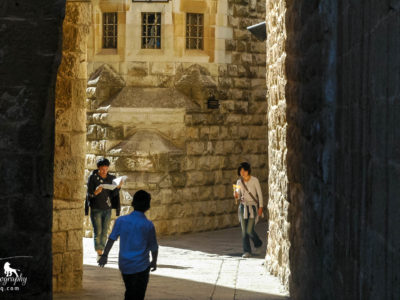Israel-Walking to Zion-5573